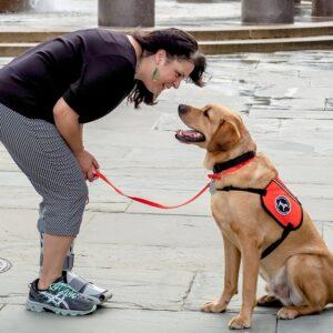 Can Dogs Hear Tinnitus?