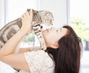 What You Need To Know When You Get a New Cat