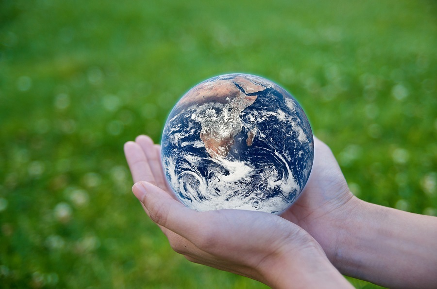 6 Ways You Can Help the Environment